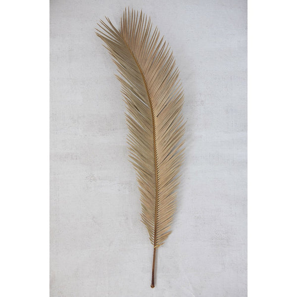 Dried Natural Feather Cut Palm