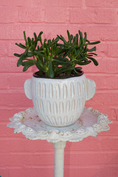 Ceramic Glazed Pot with Handles