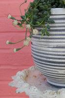 White and Grey Striped Ceramic Planter