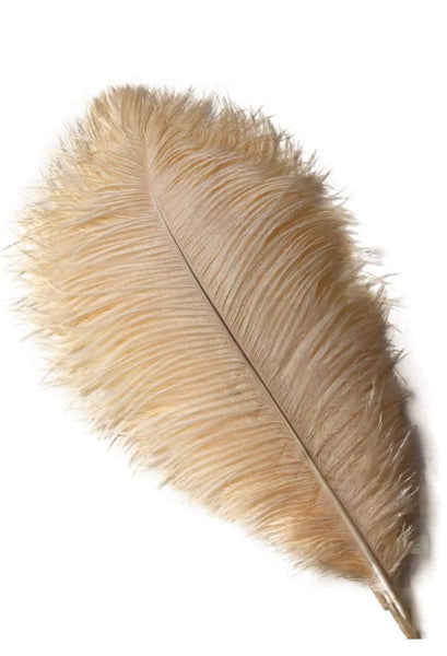 Peach Ostrich Feathers