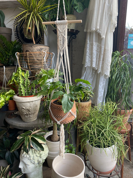 Decorative Macrame Plant Hanger