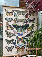 Canvas Butterly Wall Hanging Scroll