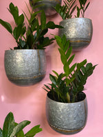 Galvanized Metal Wall Hanging Planter