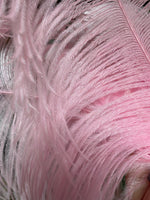 Large Pink Ostrich Feather