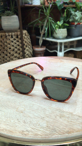 Large Poolside Tortoise Sunnies