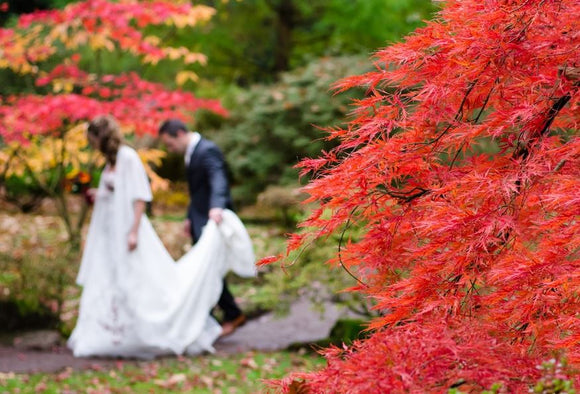 4 Fall Wedding Decorating and Party Favor Ideas You Need to Know