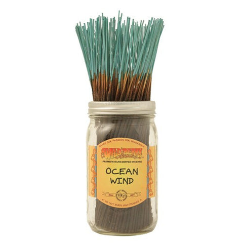 Wildberry Ocean Wind Incense (3 sticks)