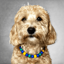 Load image into Gallery viewer, Beaded Monkey Silicone Beaded Dog Collar - Portrait of Dog Wearing Collar