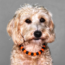Load image into Gallery viewer, Creepin' It Real Silicone Beaded Dog Collar - Portrait of Dog Wearing Collar
