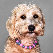 Load image into Gallery viewer, The Beaded Monkey - Everything Mice Silicone Beaded Dog Collar - Ruff Stitched Fall 2020 Collection - Portrait of Dog Wearing Collar