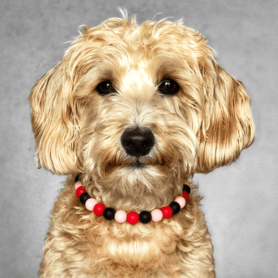 The Beaded Monkey - Flamingle Silicone Beaded Dog Collar - Ruff Stitched Original Collection - Valentine's Day - Portrait of Dog Wearing Collar
