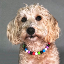 Load image into Gallery viewer, Frosty & Friends Silicone Beaded Dog Collar - Ruff Stitched Winter 2020 Collection - Portrait of Dog Wearing Collar