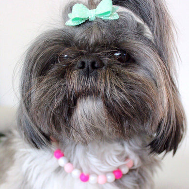 The Beaded Monkey - The Pink Aspen Silicone Beaded Dog Collar - Wag Swag 2020 Collection - Photo of Isabella Wearing Collar