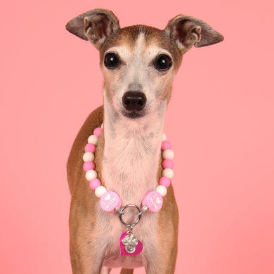 The Beaded Monkey - I ♥ Mom Silicone Beaded Dog Collar - Chelsea & Me 2020 Collection - Portrait of Dog Wearing Slip On Collar