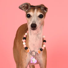 Load image into Gallery viewer, Little Princess Silicone Beaded Dog Collar - Portrait of Dog Wearing Collar (Chelsea & Me)