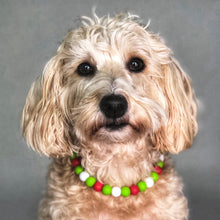 Load image into Gallery viewer, Merry Grinchmas Silicone Beaded Dog Collar - Ruff Stitched Winter 2020 Collection - Portrait of Dog Wearing Collar