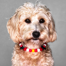 Load image into Gallery viewer, Mickey & Minnie Silicone Beaded Dog Collar - Portrait of Dog Wearing Collar