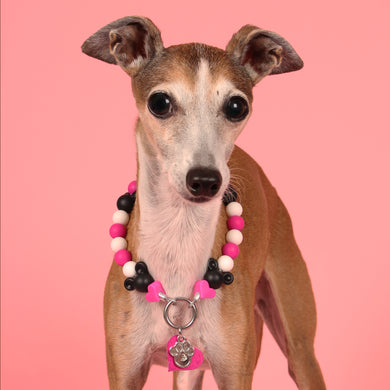 The Beaded Monkey - Minnie Mouse Silicone Beaded Dog Collar - Chelsea & Me 2020 Collection - Portrait of Dog Wearing Slip On Collar
