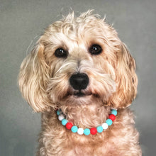 Load image into Gallery viewer, The Beaded Monkey - Peanuts Holiday Silicone Beaded Dog Collar - Ruff Stitched Winter 2020 Collection - Portrait of Dog Wearing Collar