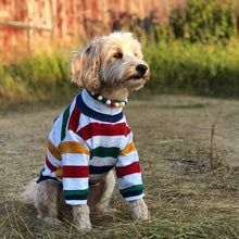 Load image into Gallery viewer, Preppy Stripes Silicone Beaded Dog Collar – Photo of Max Wearing Collar with Matching T-Shirt from Ruff Stitched (ruffstitched.com)