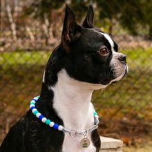 Load image into Gallery viewer, The Beaded Monkey - Sky Tie Dye Silicone Beaded Dog Collar – Ruff Stitched Spring 2020 Collection - Photo of Tyson Wearing Martingale Collar