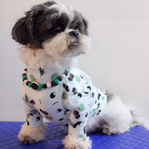 The Beaded Monkey - Silicone Beaded Dog Collar – Ruff Stitched Spring 2020 Collection - Photo of Oreo Wearing Collar with Matching T-Shirt from Ruff Stitched (ruffstitched.com)