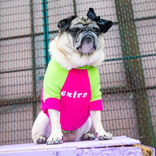 "Load image into Gallery viewer, The Bacon Collection - Pickles Wearing The ""Extra"" Dog Shirt (Pink & Green)"