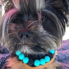 Load image into Gallery viewer, The Beaded Monkey - Silicone Beaded Dog Collar – Ruff Stitched Summer 2020 Collection - Photo of Lily Bell Wearing Collar