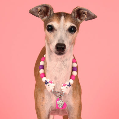 The Beaded Monkey - We Believe Silicone Beaded Dog Collar - Chelsea & Me 2020 Collection - Portrait of Dog Wearing Slip On Collar