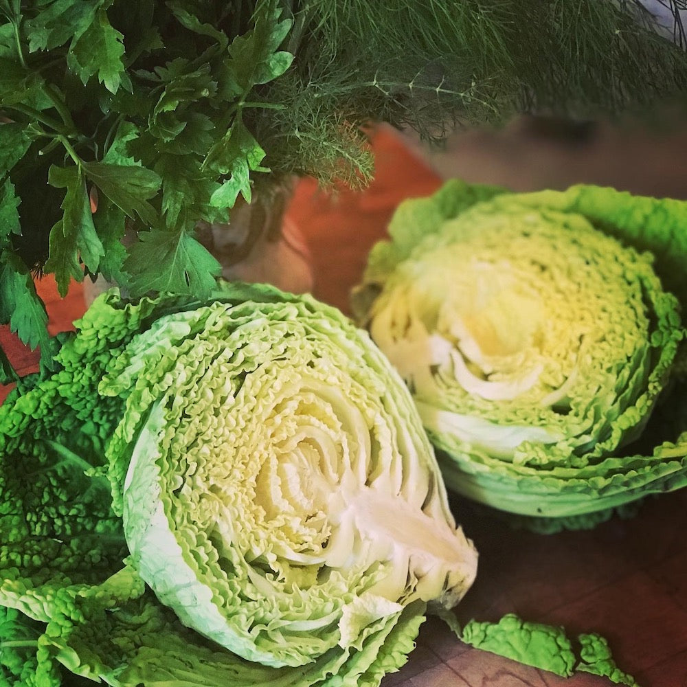 Seared Savoy Cabbage with Easy Dill and Caper Sauce