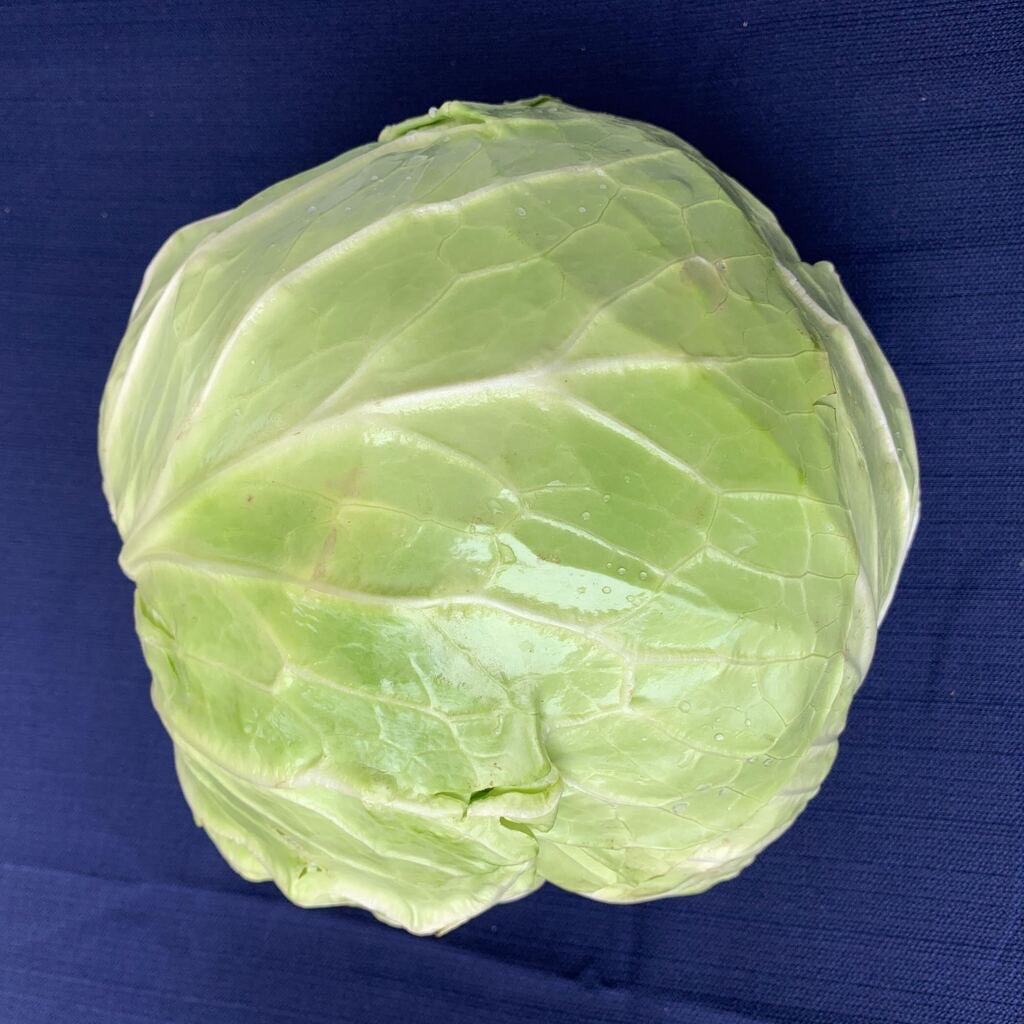 Cabbage | Green