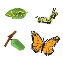 Load image into Gallery viewer, Life Cycle Set - Monarch Butterfly - Behind The Trees Wooden Toys