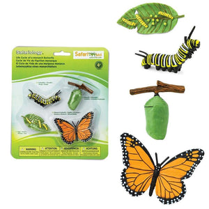 Life Cycle Set - Monarch Butterfly - Behind The Trees Wooden Toys