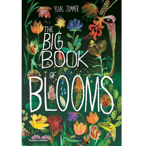Big Books of Blooms - Behind The Trees Wooden Toys