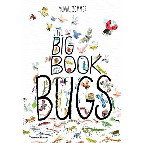 Big Book of Bugs - Behind The Trees Wooden Toys