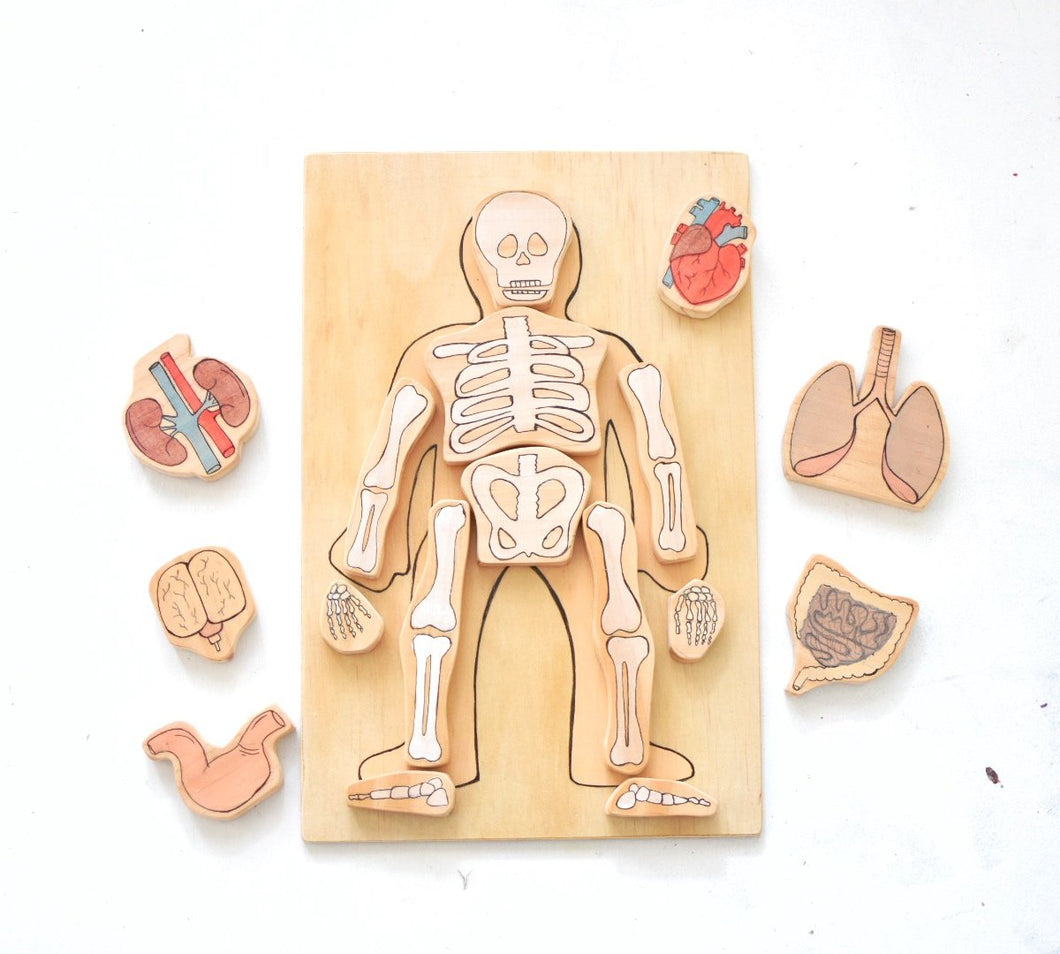 Human Body Skeleton Wooden Playboard Learning Educational Block Set - Behind The Trees Wooden Toys