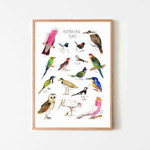 Australian Birds Poster - Behind The Trees Wooden Toys