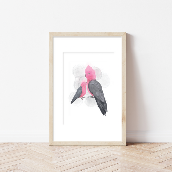 Galahs (A4 Art Print on Recycled Paper)