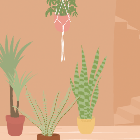 Plants and Stairs (A5 Art Print on Recycled Paper)
