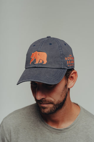 Embroidered Dad Cap Fit Hat in 100% Cotton Chino Twill, The Normal Brand, $30