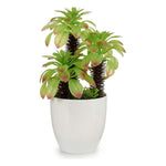 Decorative Plant White (17 x 31 x 17 cm) White