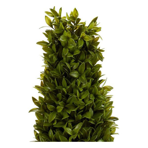 Decorative Plant (20 x 60 x 20 cm)
