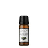 Juniper Berry - Organic Essential Oil