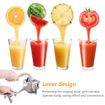 Stainless Steel Manual Hand Press Juicer