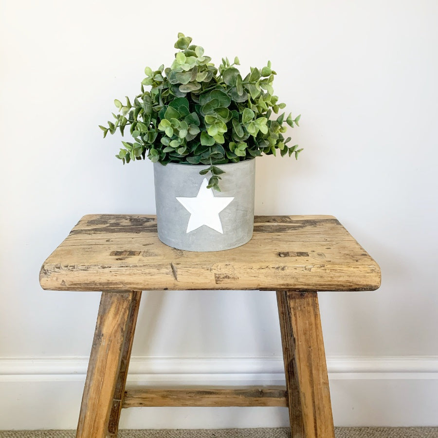 White Star Cement Planter, Medium