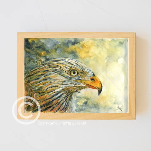 Lynette Lunn Art - Red Kite