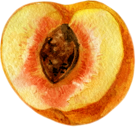 peach sliced in half