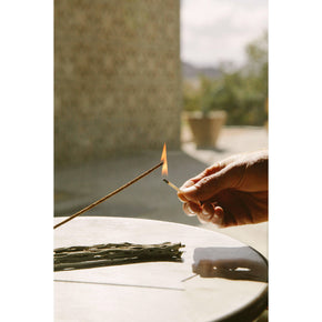 White Sage Campfire Incense - The Red Lark Shop