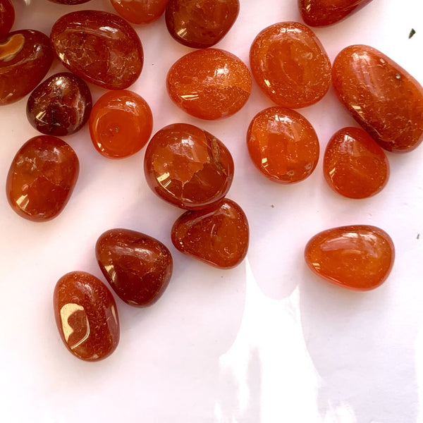 Carnelian Tumbled - Thecrystalproject