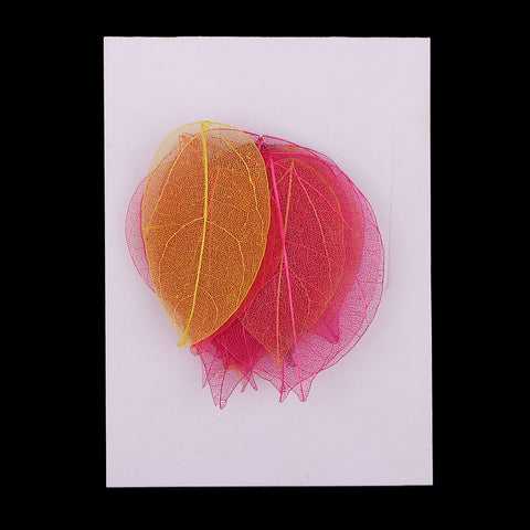 Image of 20pcs Dries Linden Skeleton Leaves for Scrapbooking Wedding Invitation Decor